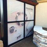 Pandora vinyl window wrap